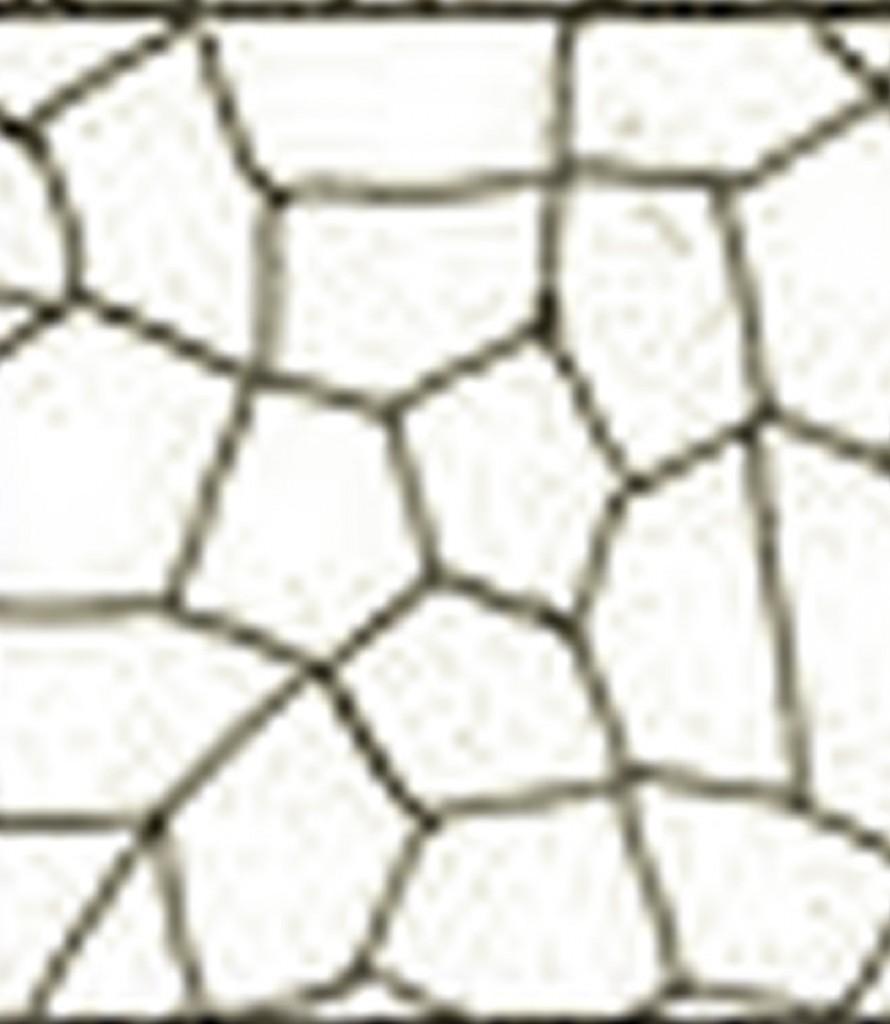 motif toile araignee